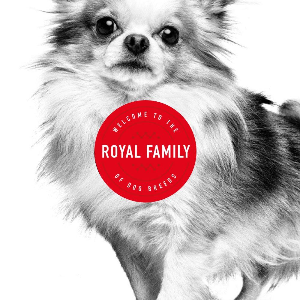 Royal Canin's Royal Family